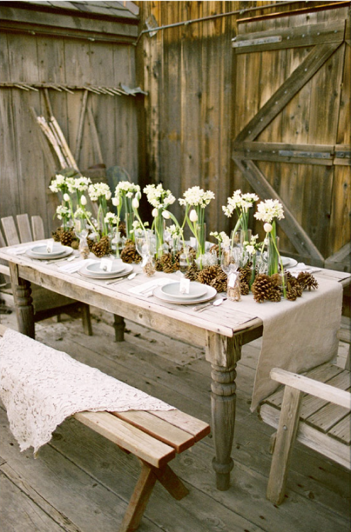 Rustic Garden Decor Ideas Photograph