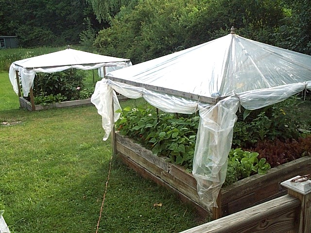 Making raised bed greenhouses from recycled materials david fuhriman pinpoint for Best material for raised garden beds