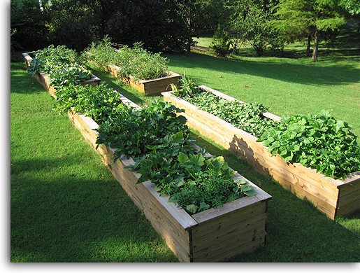 DIY 10 raised garden beds PinPoint