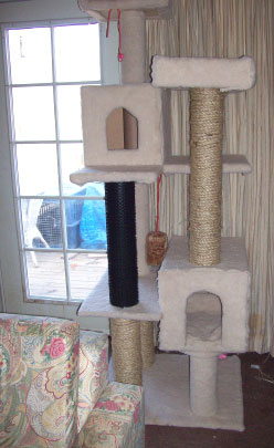 Diy cat condo pinpoint for How to make a cat tower