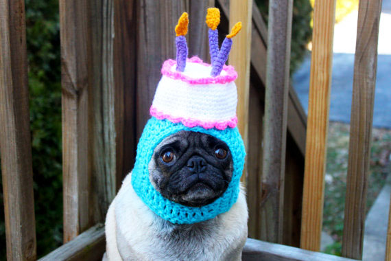 Hilarious Knitted Hats