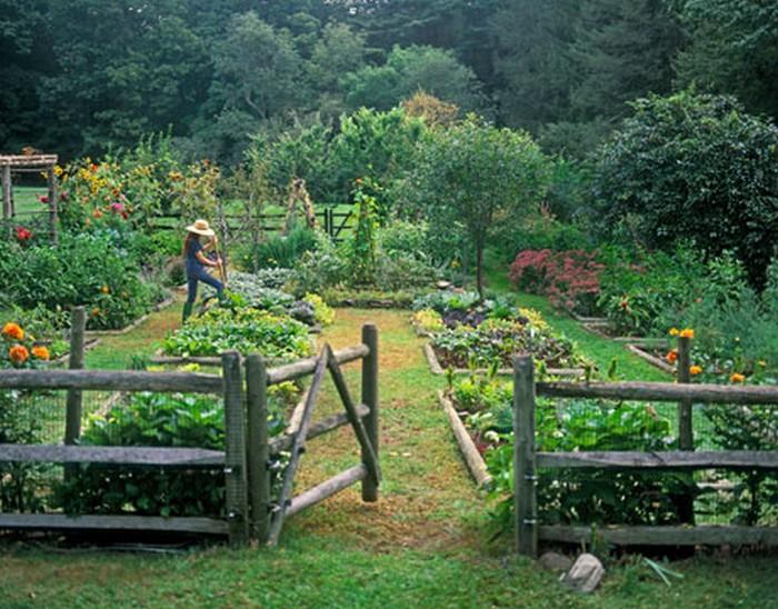 Martha Stewart Living Craft Furniture Organic & Vegetable Herb Garden | PinPoint