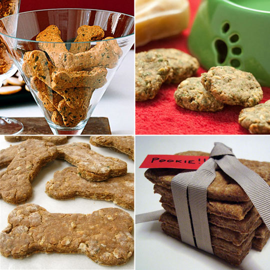 Homemade Dog Treats http://webcodeshools.com/Homemade_dog_treats_-_for_Christmas_gifts/