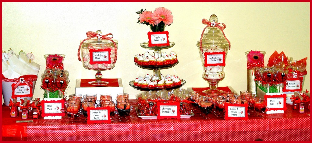 pics photos ladybug baby shower ideas