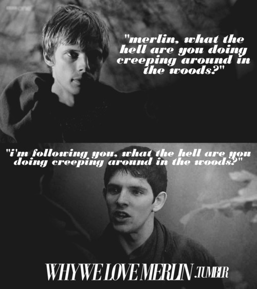 Funny Merlin Bbc Quotes Quotesgram