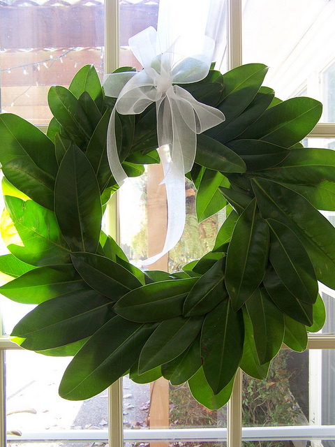 Magnolia Tree Wreath. Now where can I steal some leaves….? This is probably a
