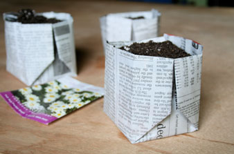 Origami Newspaper Planter: Recycle your newspaper with an easily folded biodegra