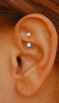 Want!!! Rook.