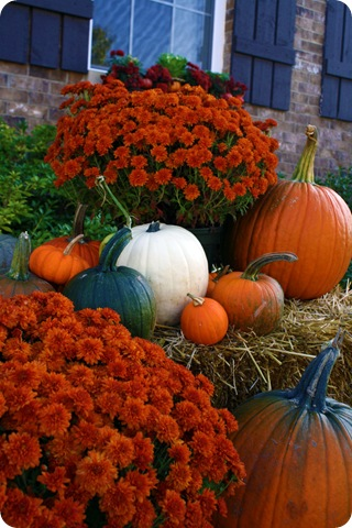 Love decorating for fall! TONS! And I mean TONS of Halloween/Fall Decor ideas fr
