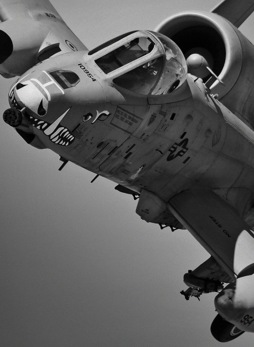 Fairchild Republic A-10 Thunderbolt a.k.a. The Warthog