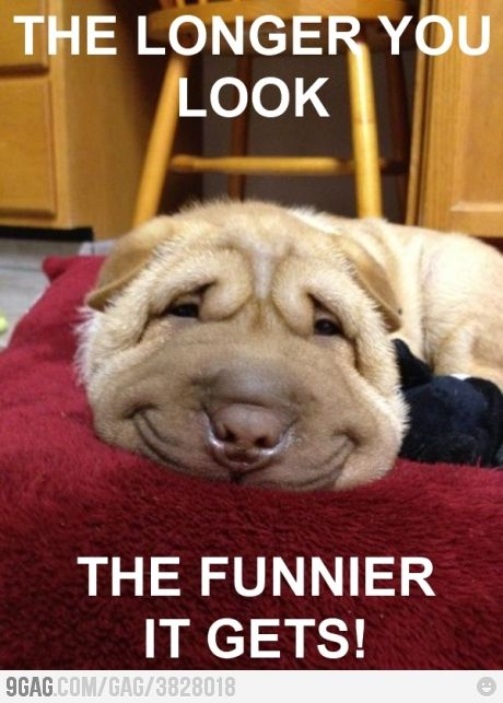 ……….. Yeah it does get funnier :)