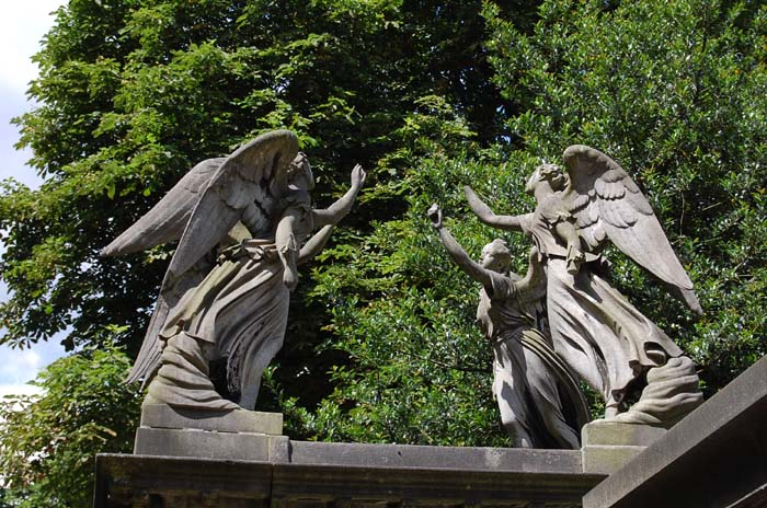 The Dr spotted these sneaky Weeping Angels in Kensal Green cemetery, London. The