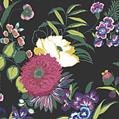 Black & White Wallpaper, Floral Wallpaper, Wallpaper