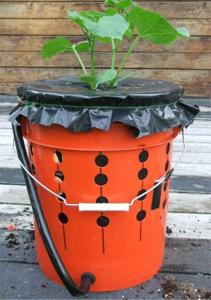 Container gardening 101 homegrown org how to make self watering recycled bucket pinpoint - Recycled containers for gardening ...