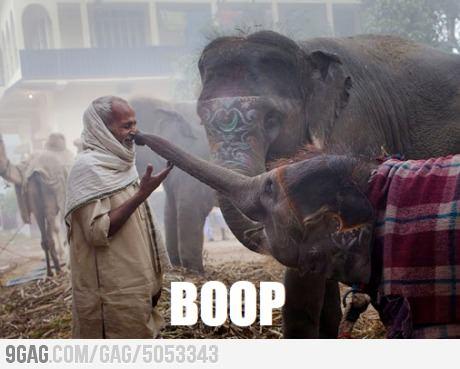 Best boop ever