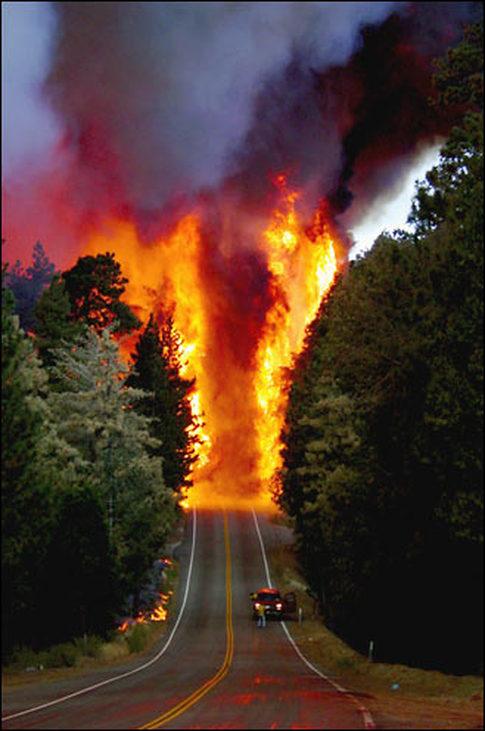 Forest Fire, Lake Arrowhead,California