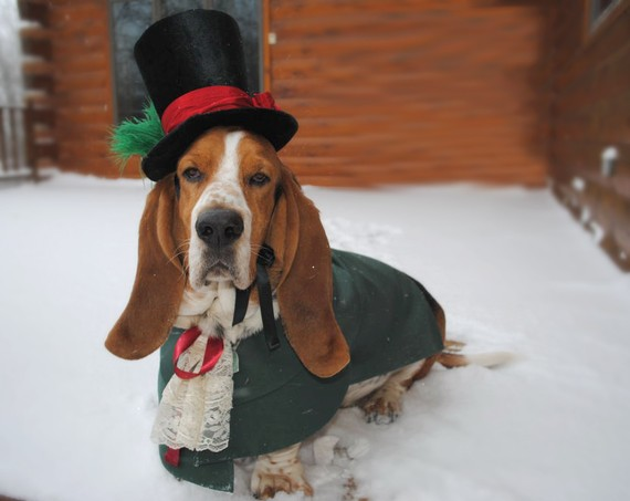 Christmas Caroler Dog Pet Costume outfit by by MattiOnline on Etsy, $94.95