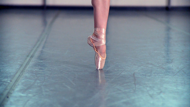 """"""" Pointe Shoes """""""