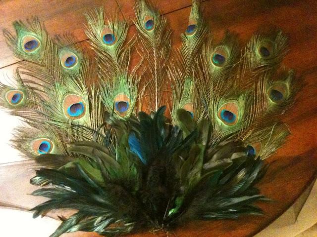 Peacock Costume DIY