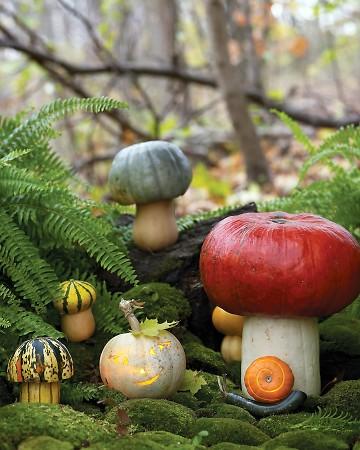 Toadstool Pumpkins