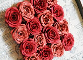 Paper Roses, Paper Roses . . . .