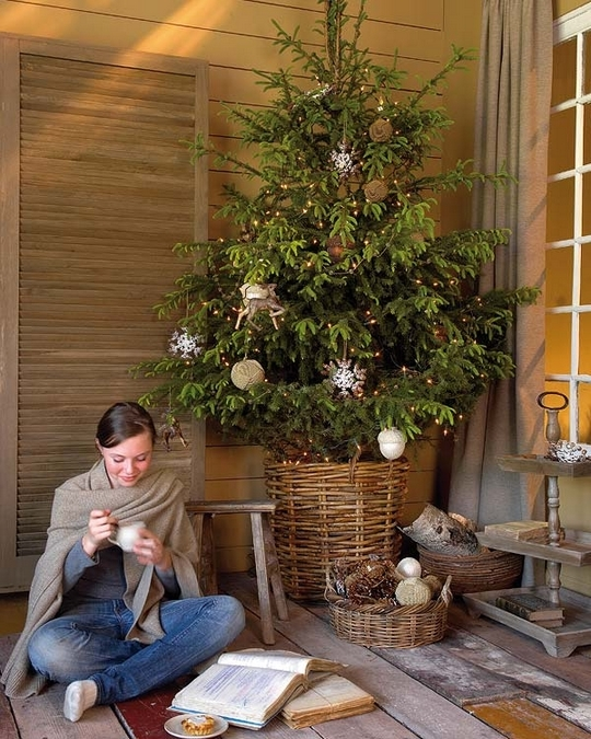 VERY large wicker basket for tree.
