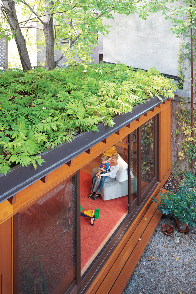 Thibault green roof single story addition