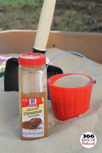 Cinnamon in the Sandbox – It keeps the bugs away!
