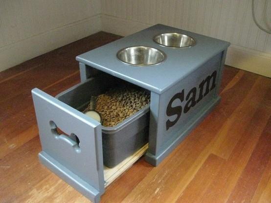 Food To Build Dog