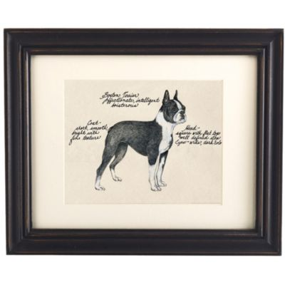 Boston Terrier Dog Print | Ballard Designs