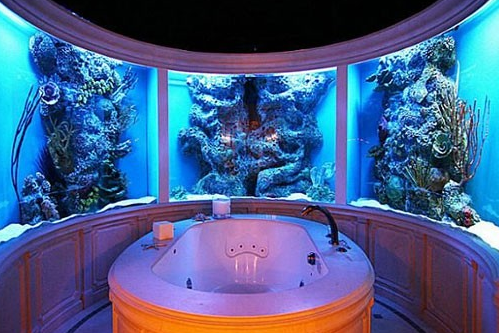 Fish aquarium bathroom