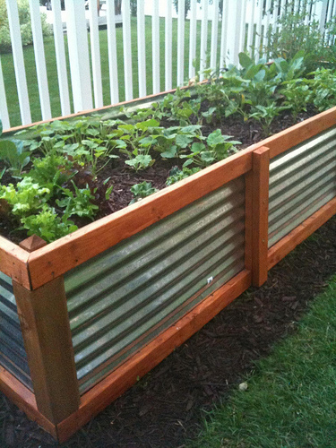 Neat idea for raised beds