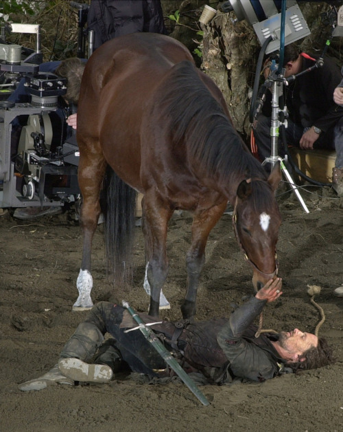 ♥ Viggo bonded so much with the horse he rode in the Lord of the Rings ser