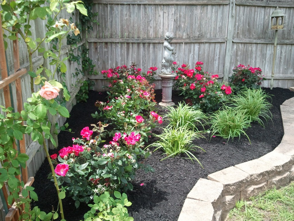Landscaping with Roses Pictures - WOW.com - Image Results