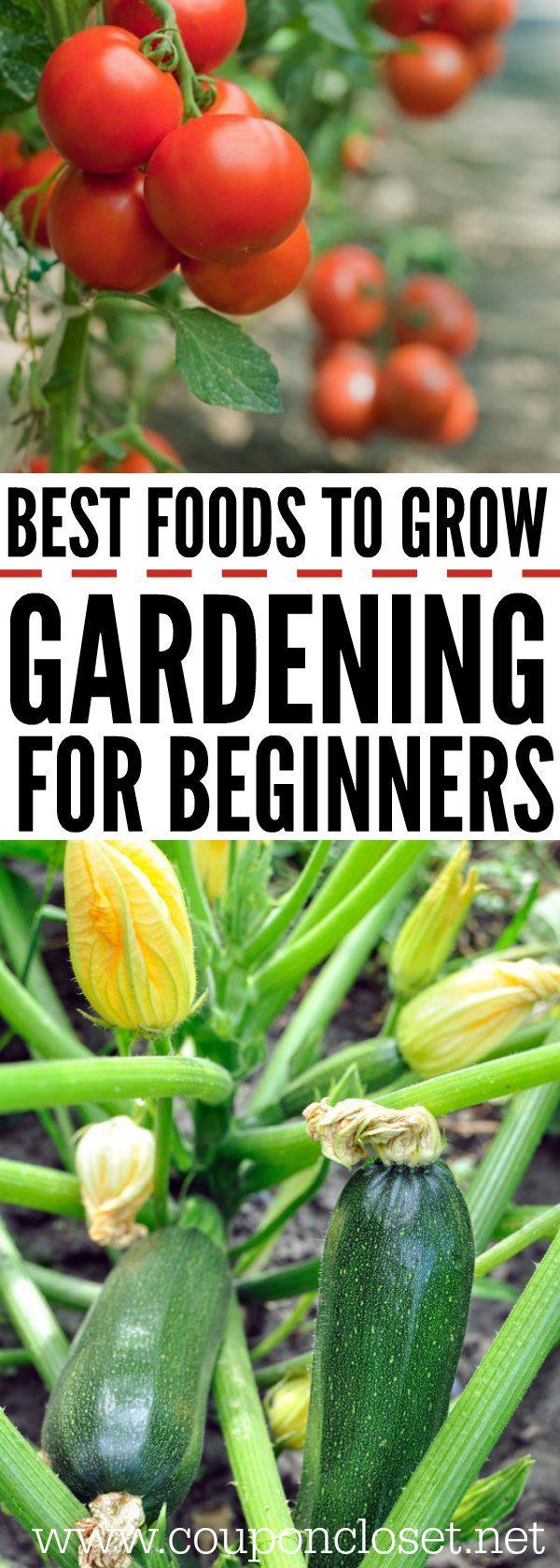 22 garden diy how to grow ideas