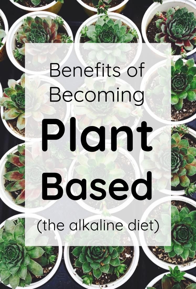 20 alkaline diet tips ideas