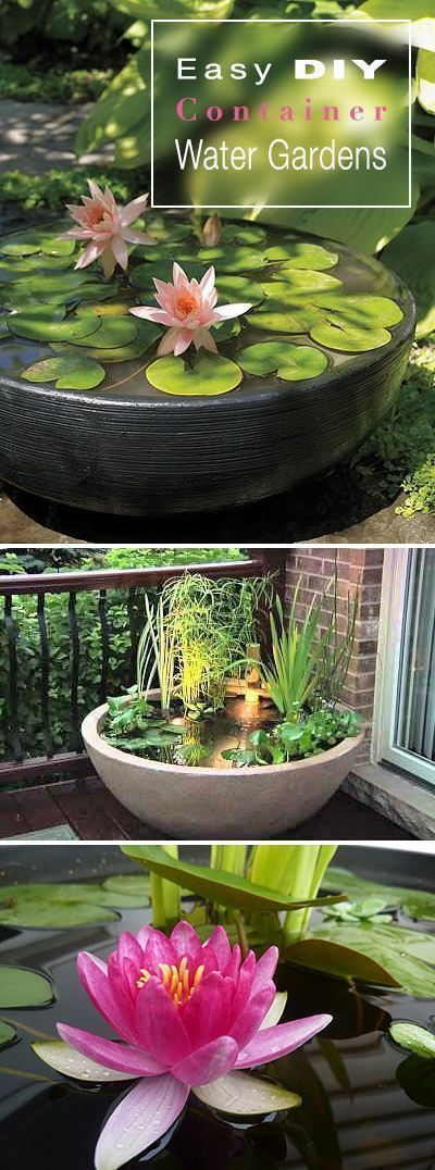24 urban garden architecture