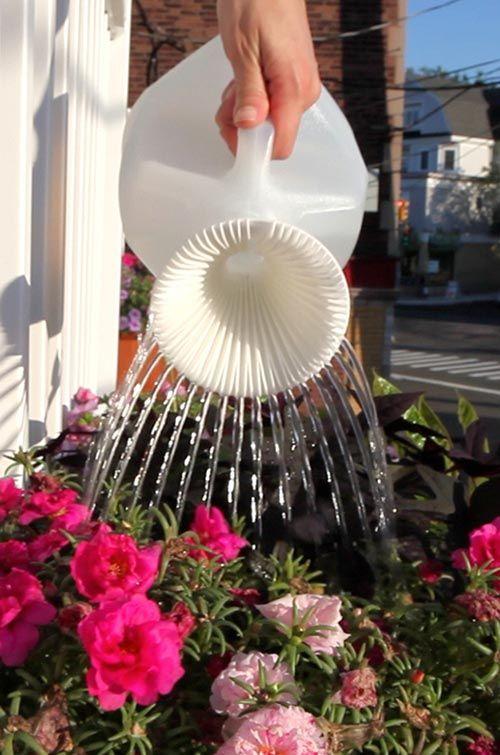 Milk Jug Watering Can -   25 garden water milk jug ideas