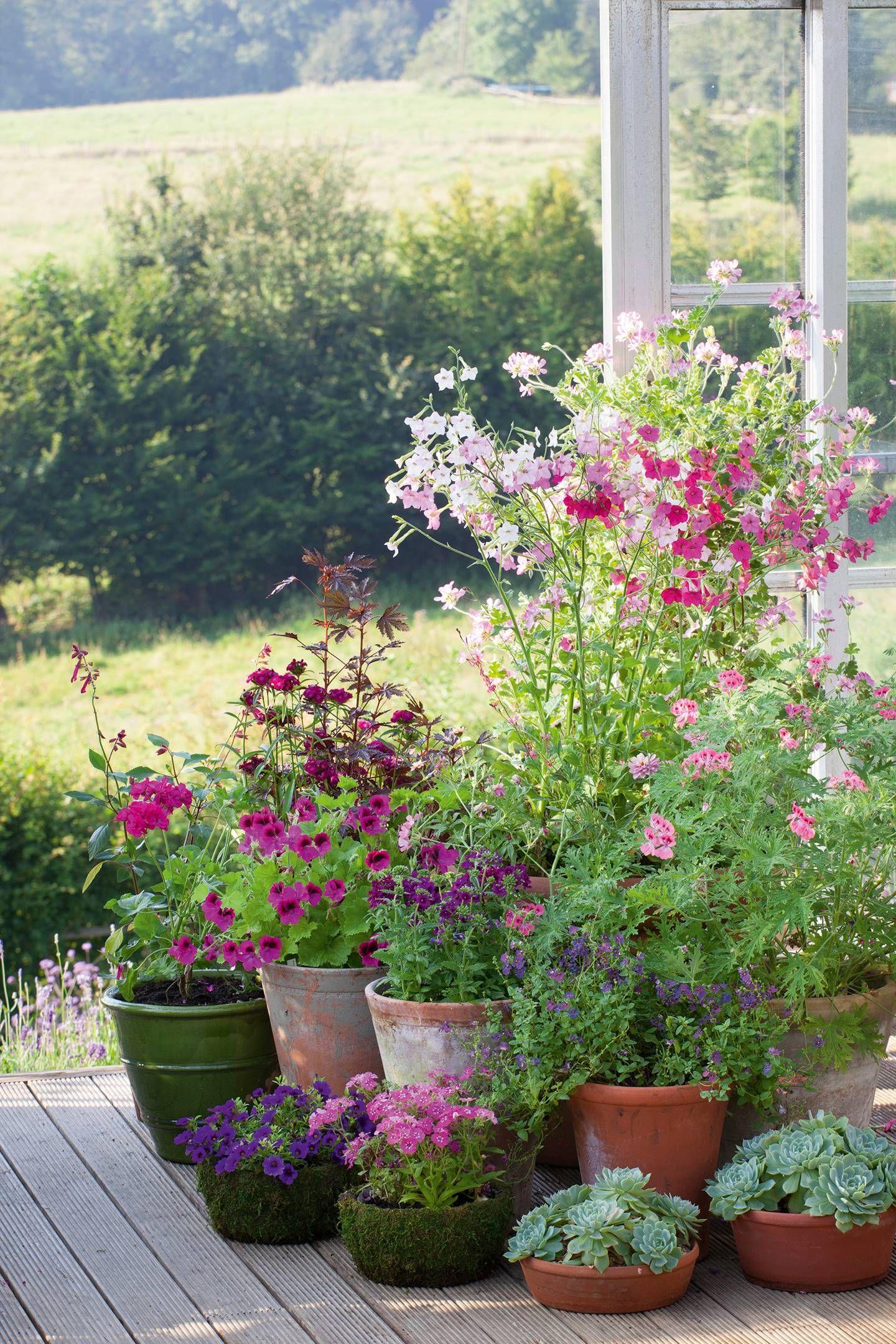 23 decorating garden pots ideas