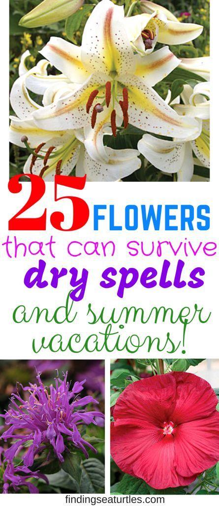 24 flower garden crafts ideas