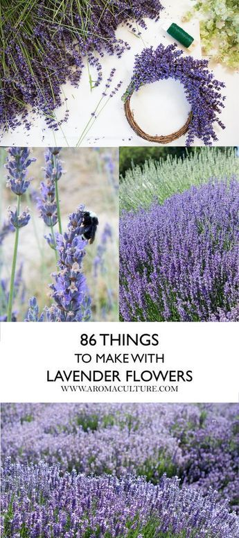 86 Ways to Use Lavender -   24 flower garden crafts ideas