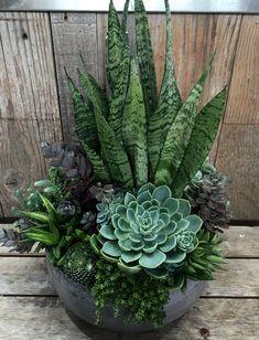 25 flower garden house ideas