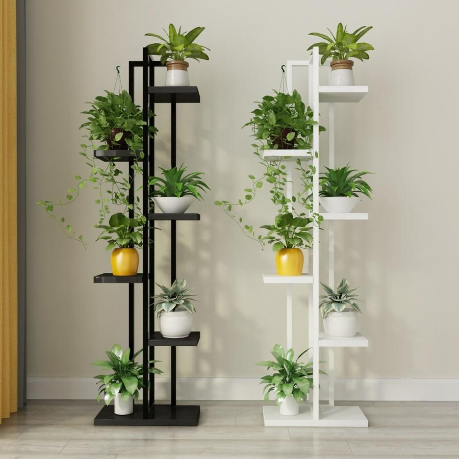17 plants Decorating products ideas