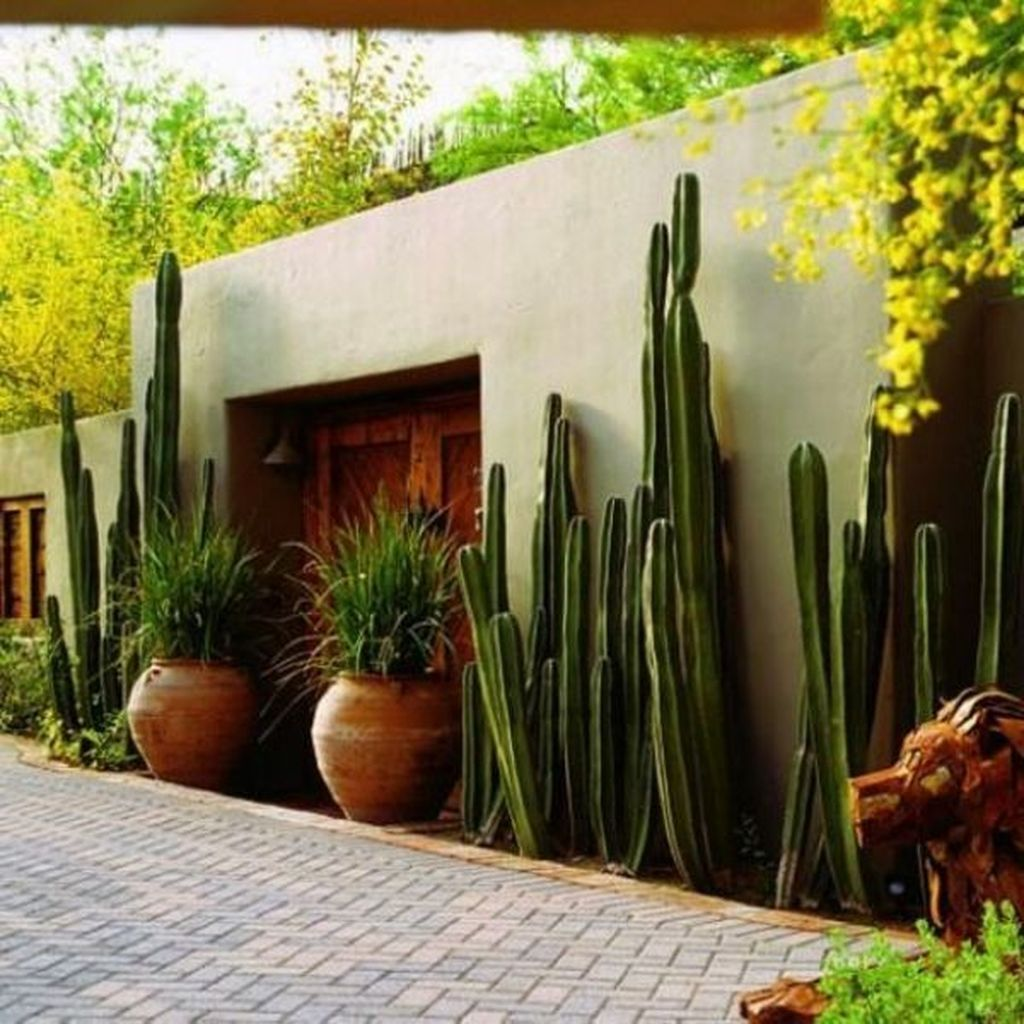 16 garden design Luxury landscapes ideas