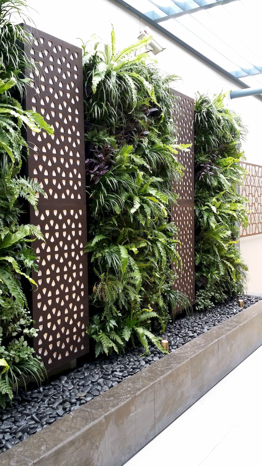19 garden design Wall plants ideas