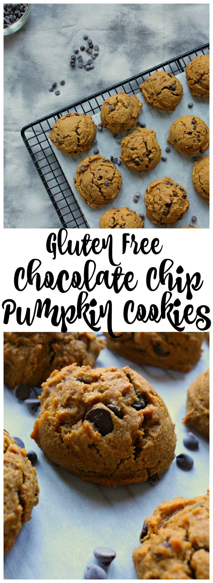 13 healthy recipes Gluten Free chocolate chip cookies ideas