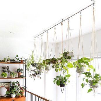 43 Charming Hanging Plant Ideas -   11 plants Decor corner ideas
