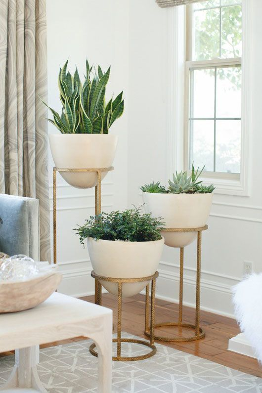 10 Tips for How to Decorate Like a Designer -   11 plants Decor corner ideas