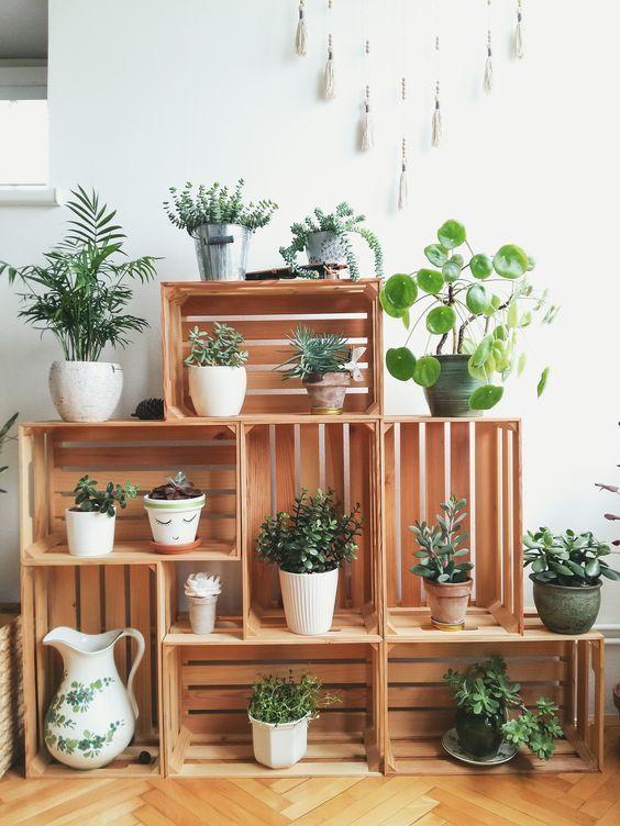 25+ DIY-Pflanzenstände mit Gebrauchtwarenladen -   11 plants Decor corner ideas