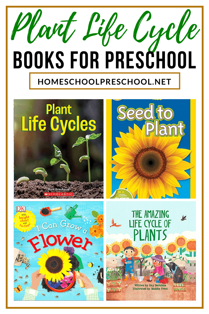 Plant Life Cycle Books for Kids -   16 plants Teaching kids ideas